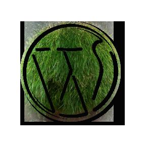 WordPress Workshops & Schulungen